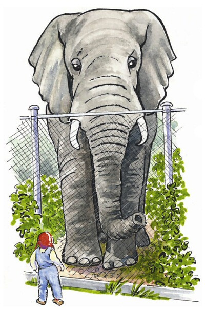 Alfie and the elephant illustration